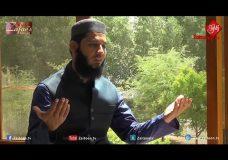 La Ilaha Illallah | Hafiz Fahad Shah