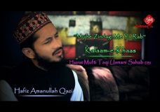 Mujhe Zindagi Me Ya Rab | Hafiz Amanullah Qazi | New Munajaat Video | Ramadhan 2016