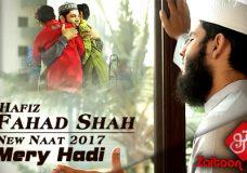 Mery Hadi Mery Rehbar   Hafiz Fahad Shah   New Naat 2017 (HD)   Zaitoontv