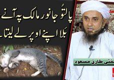 Mufti Tariq Masood | Paaltu Jaanwar Maalik pe anay wali Bala apnay upar leleta hai?